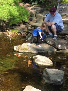 Your family will really engage with the Water Garden's & fish!