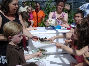 Everyone got to touch a Butterfly