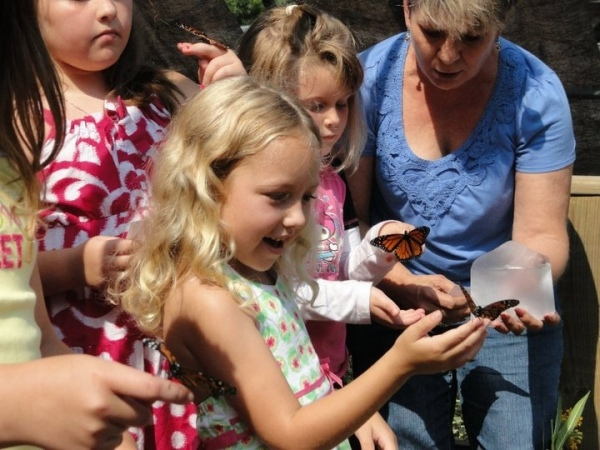 Register your kids to get to release a Butterfly! But do it quickly - they are going quick!