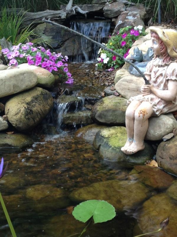 Water garden renovation 101 carter 39 s garden blog for Redesign your garden