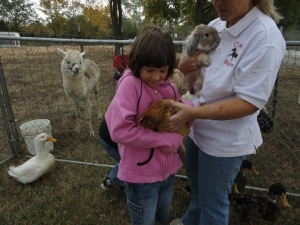 Pet the bunny's, chickens, lama's and more at the petting zoo! PLUS there will be pony rides for the kids.