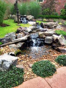Unique Water Gardens, Pondless Waterfalls and Fountains will be showcased on the Pond Tours.