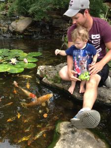 Carters Nursery Pond & Patio is holding 3 Pond Tours this year. A Spring Pond Tour (May 14th.), a Summer Pond Tour (June 25th.), & a Fall 'Moonlight' Pond Tour (September 17th.). All are fund raisers for our local Jackson Madison Co. Humane Society.