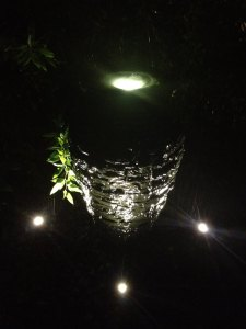 Glowing Fountains, waterfalls & more await at Carters Nursery Pond & Patio's annual Moonlight Pond Tour!