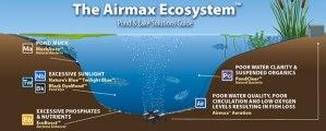 airmax_ecosystem