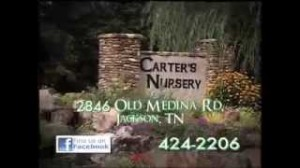 Water Features, Ponds, Pondless Waterfall, Fountains | Carters Nursery Pond & Patio | Jackson, Tn. | Oakland, Tn. |Collierville, Tn. |Germantown, Tn.| Cordova, Tn. |Atoka, Tn. |Mumford, Tn.
