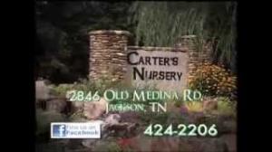 Water Features, Ponds, Pondless Waterfall, Fountains | Carters Nursery Pond & Patio | Jackson, Tn. | Oakland, Tn. |Collierville, Tn. |Germantown, Tn.| Cordova, Tn. |Atoka, Tn. |Mumford, Tn.