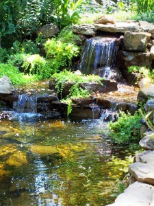 "Learn more about Water Features at the  ""Get your feet wet with Water Features"" workshop at Carters Nursery Pond & Patio, Jackson, Tn.  Saturday, July 16 2016"