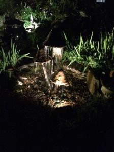 Unique Fountains await at the Moonlight Pond Tour!